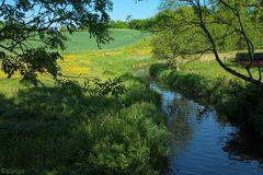 Die Eider - Schleswig-Holsteins größter Fluss!