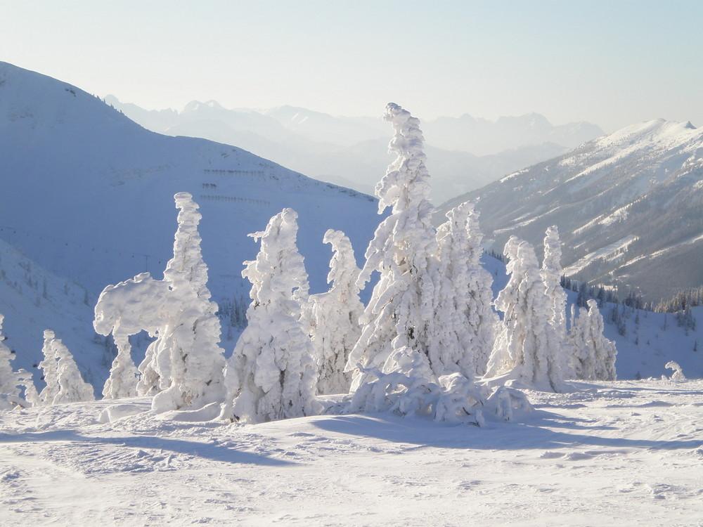die Eismänner vom Hochkar am 26.12.2008