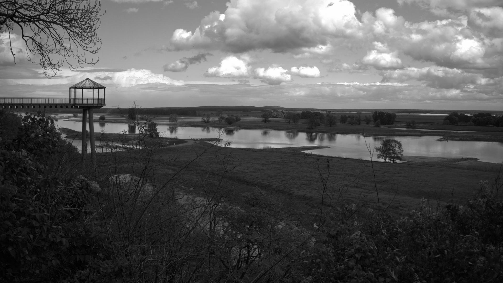 Die Elbe bei Arneburg
