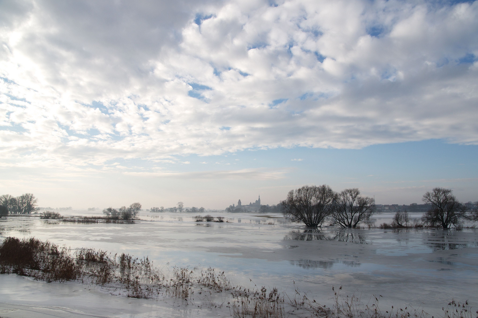 Die Elbe bei Tangermünde im Winter 2011