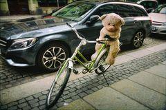 Die entfernte Dresdner Verwandtschaft fährt mit dem Fahrrad mit