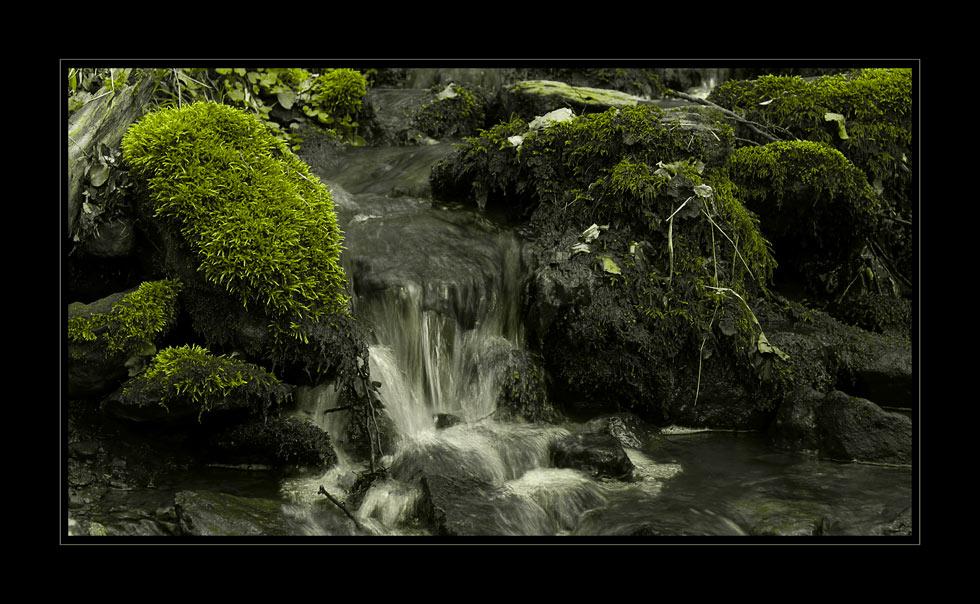 Die Entwasser