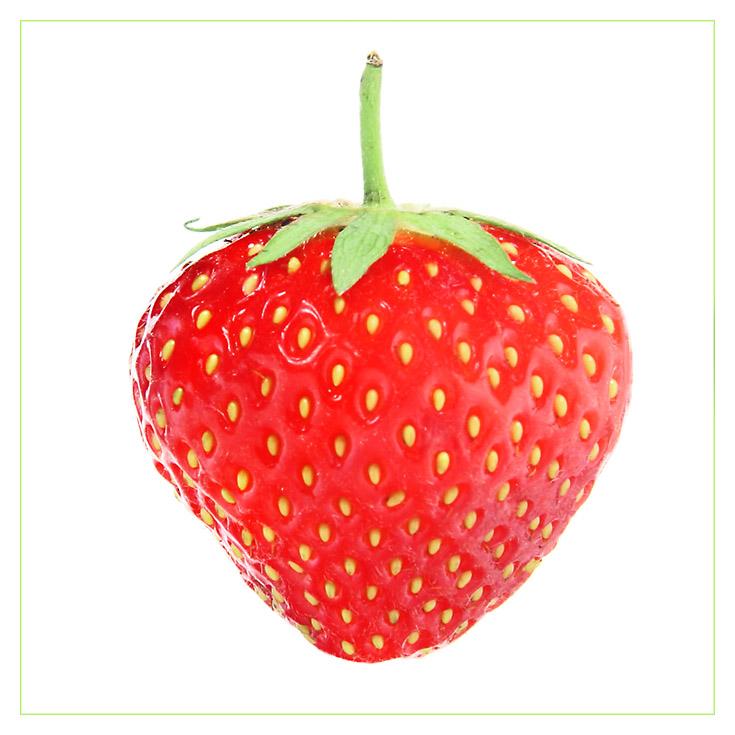 Die Erdbeere an sich