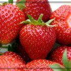 Die Erdbeeren ...