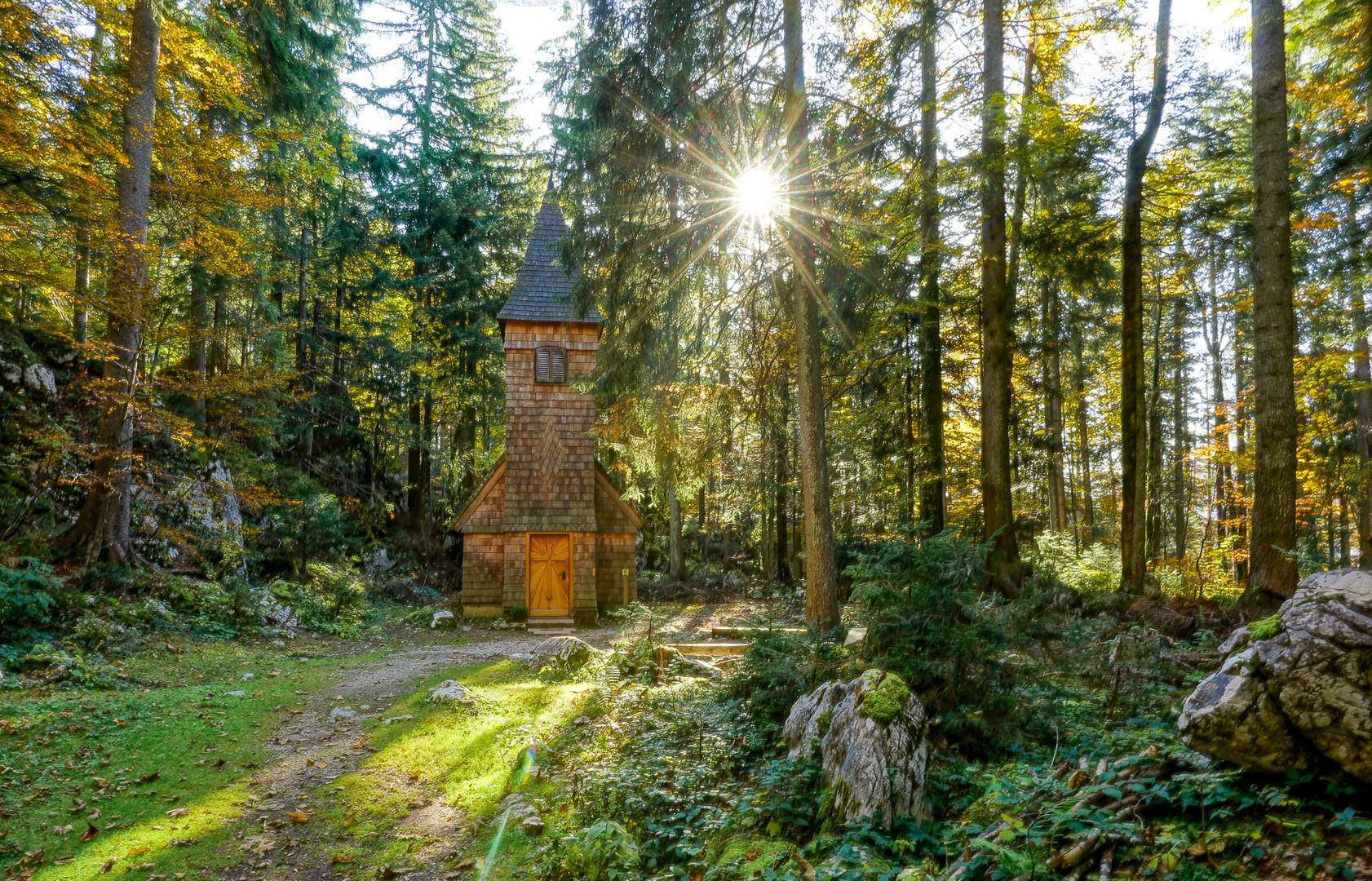 Die Erleuchtung..oder die Kirche im Wald lassen.