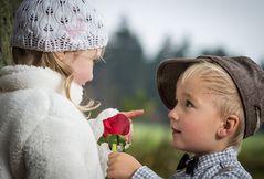Die erste Rose,,