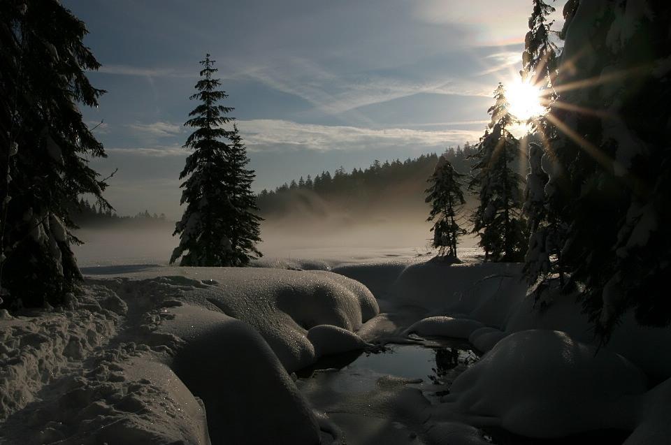 Die ersten Sonnenstrahlen...