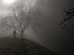 Die ersten Sonnenstrahlen druch den Nebel
