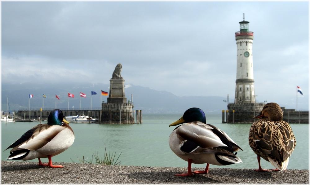 Die ersten Touristen......