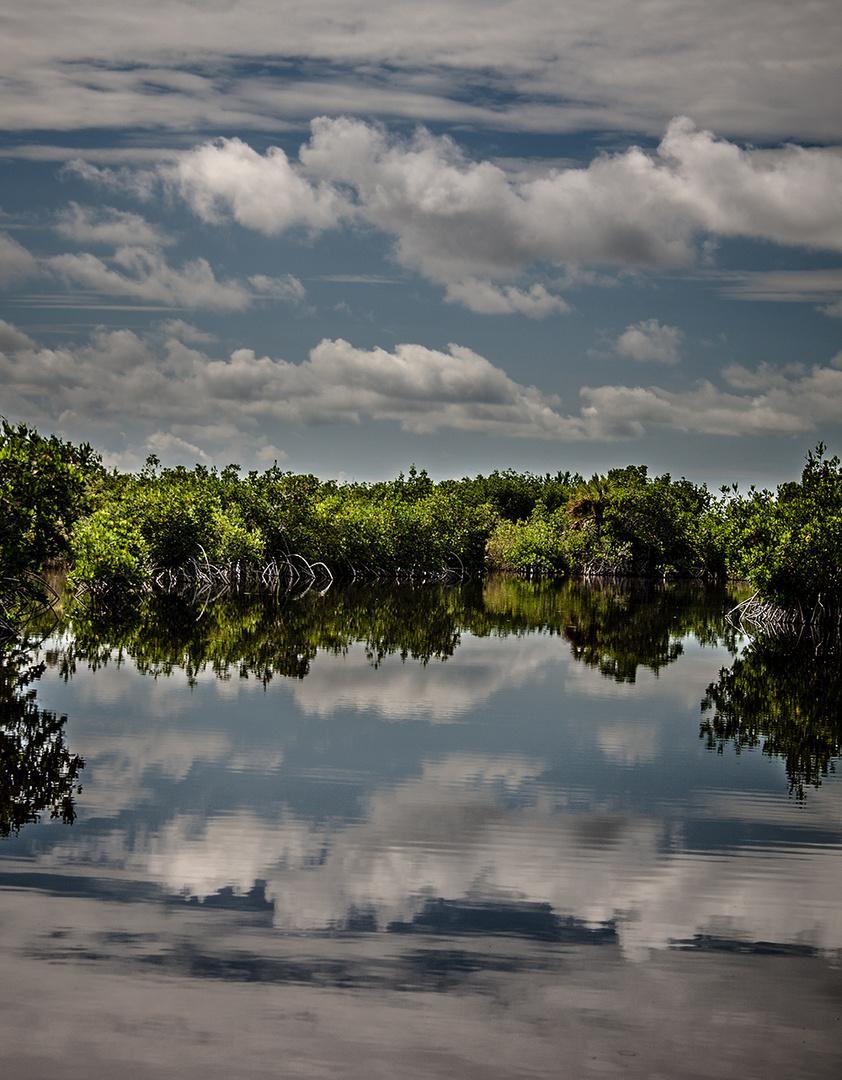 die Everglades stehn Kopf....