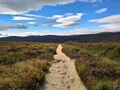 Die ewige Weite der Wicklow Mountains in Irland