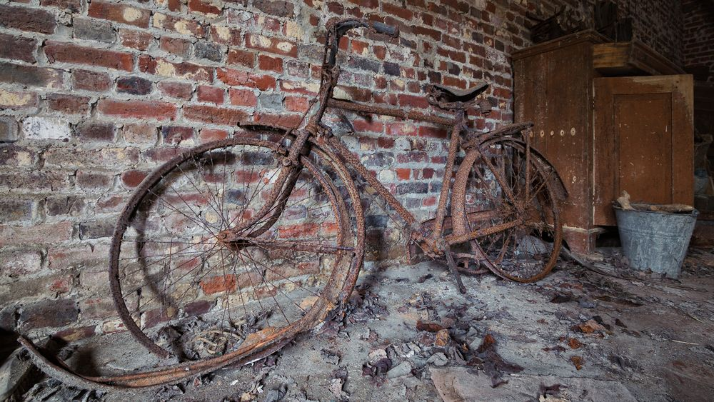die Fahrrad-Inspektion...