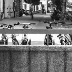 Die Fahrradtruppe