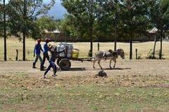 die Fahrt zum Lake Nakuru...