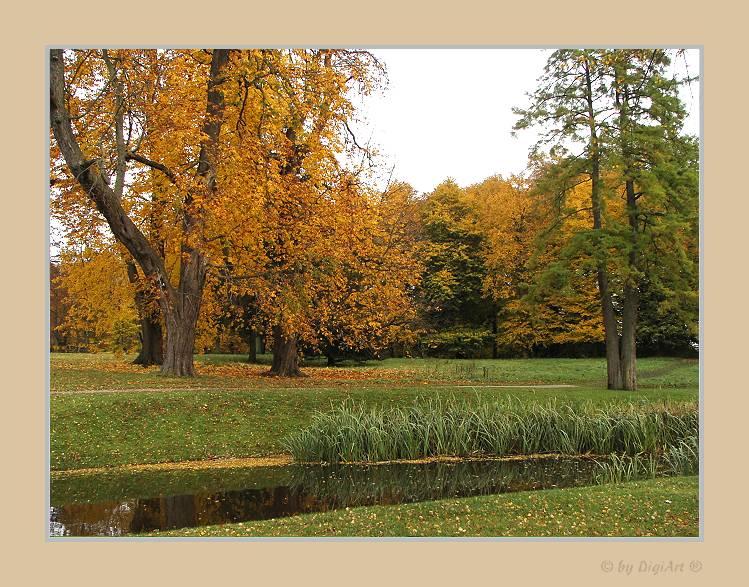 Die Farbe Herbst 02