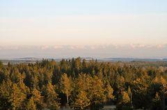 Die farben der Bäume werden von Westen immer schöner