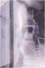 Die Fassadenputzer