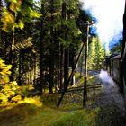 Die Fichtelbergbahn bei voller Fahrt
