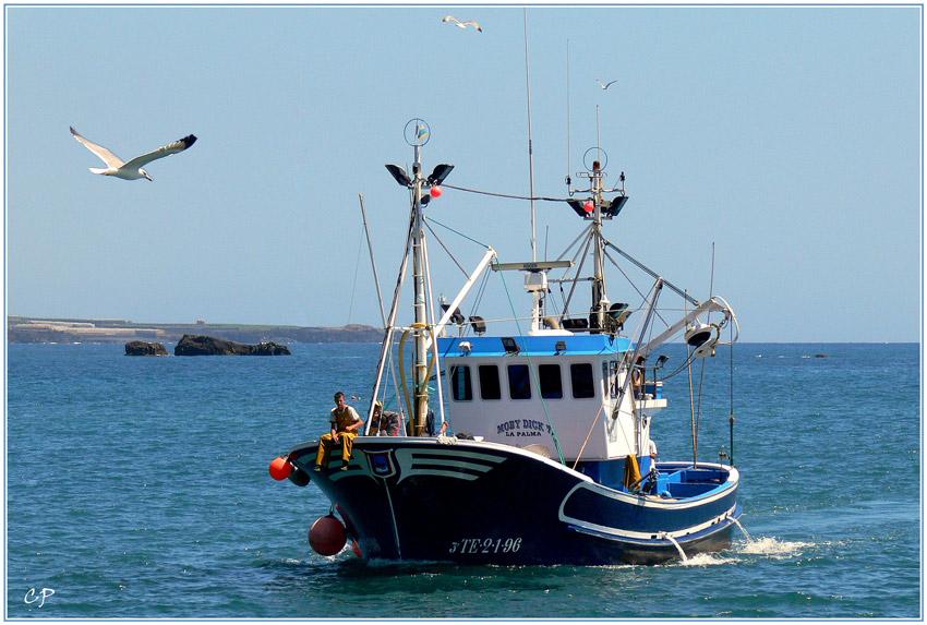 Die Fischer kehren heim ...