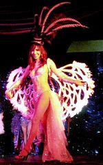 Die Flügel Frau