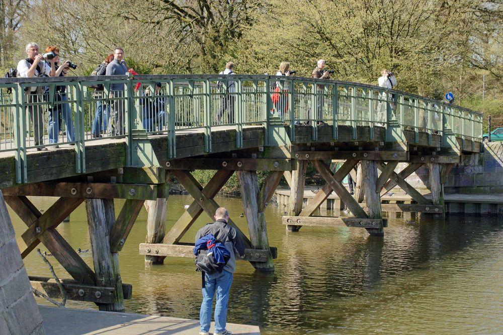 ......die Foddonasen von Brücke 10 sind gut aufgestellt.....