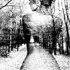 .Die Frau im Wald…