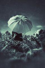 Die Frau mit dem Regenschirm im Artischocken Feld  (39)