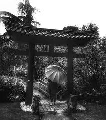 Die Frau mit dem Regenschirm im Japanischen Garten (99)