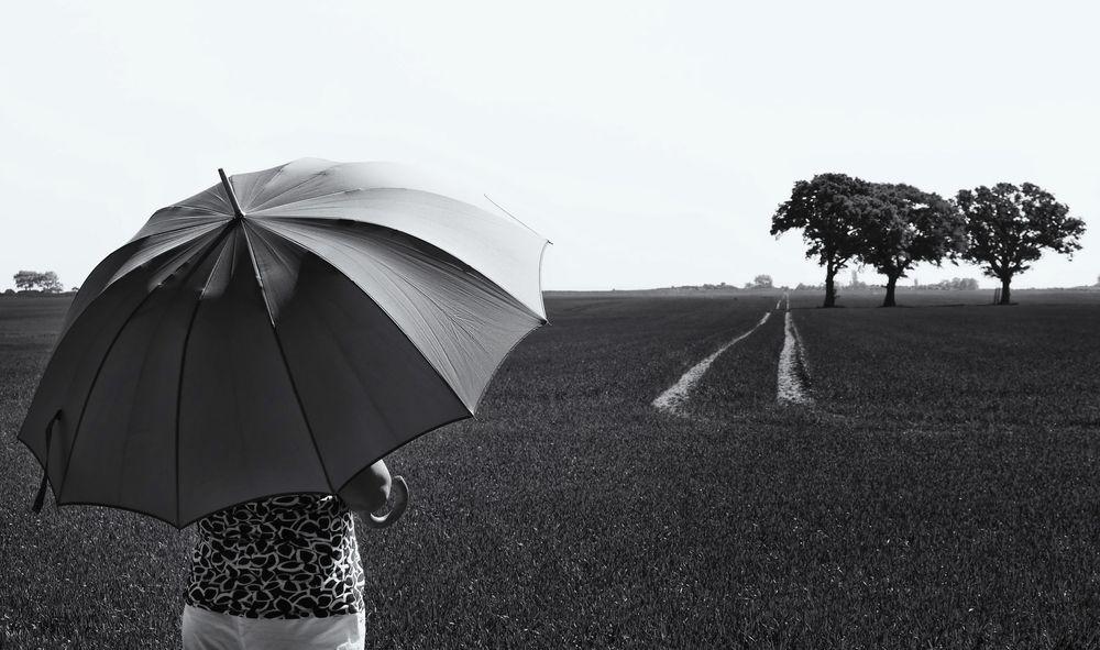 Die Frau mit dem Regenschirm ist am Feld der 3 Bäume angekommen (42)