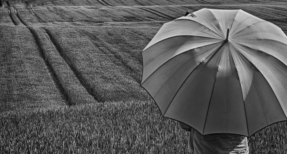 Die Frau mit dem Regenschirm, rätselt noch über den richtigen Weg (44)