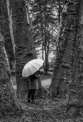 Die Frau mit dem Regenschirm spürt die Kraft der Bäume (34)