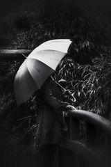 Die Frau mit dem Regenschirm steht auf einer kleinen Brücke (96)