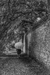 Die Frau mit dem Regenschirm; sucht also weiter nach einem Zugang ins Haus der Erinnerungen!