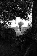 Die Frau mit dem Regenschirm: und weiter geht's...(87)