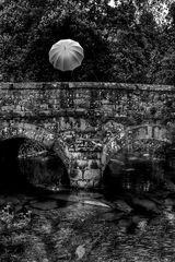 Die Frau mit dem Regenschirm; und wieder quert sie eine Brücke (24)