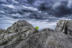 Die Frau mit dem Regenschirm wagt einen Blick zur Insel Batz (65)
