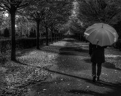 Die Frau mit dem Regenschirm; wandelt über den Friedhof der......... Erinnerungen (26)