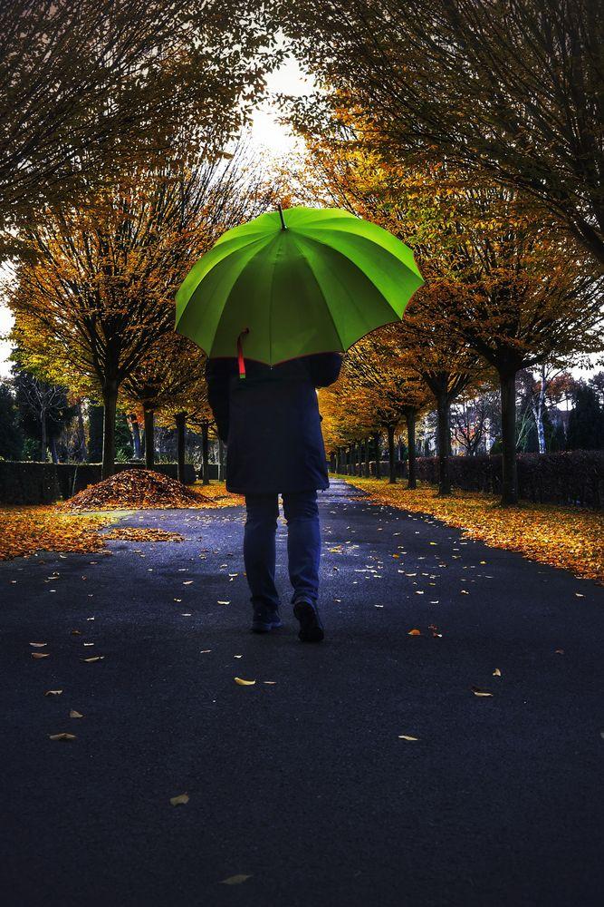 Die Frau mit dem Regenschirm wird vom Herbst eingeholt (50)