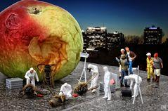 Die Früchte des verbotenen Baumes