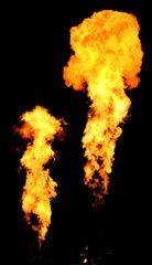 Die Gebrüder Flamme