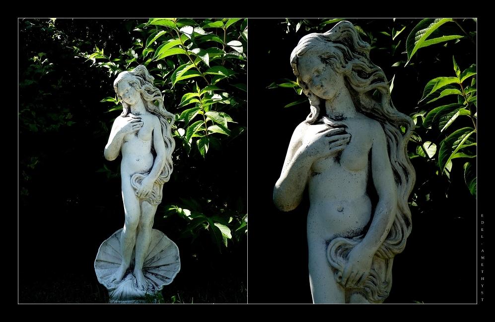 """""""Die Geburt Der Venus"""""""