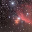 Die Gegend um den Pferdekopfnebel im Sternbild Orion