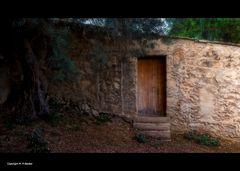 Die-geheime-Tür...