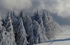 Die Geister des Winters