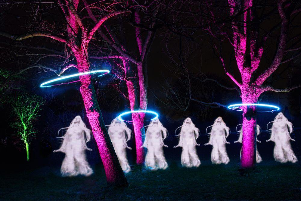 Die Geister - die ich rief