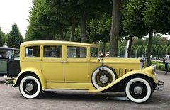 Die gelbe Eleganz