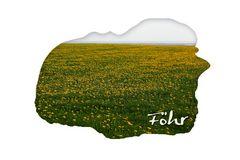 Die gelbe Insel Föhr