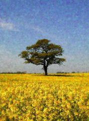 Die gelbe Jahreszeit