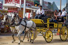 Die gelbe (Post-) Kutsche auf der Feria in Chiclana