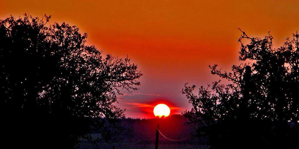Die goldene Oktobersonne.......